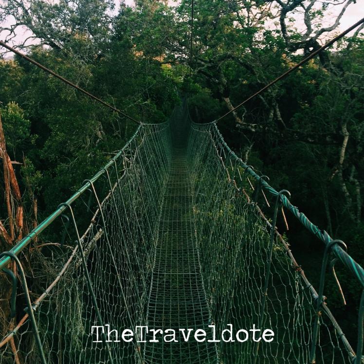 bridge-01-01