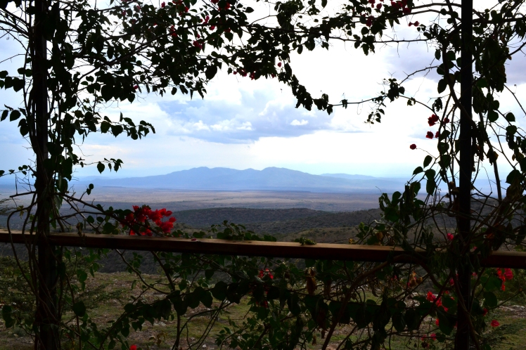 Great Rift valley View