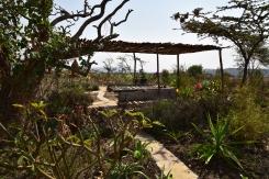 Chill Area in Garden