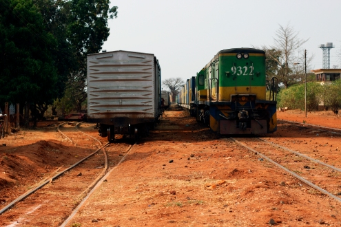 Red dust, trains and a Baobab