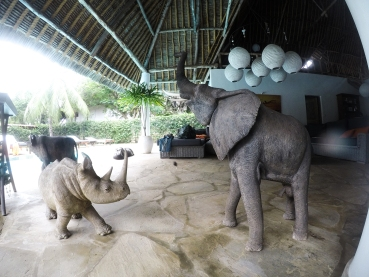 Rhino and Elephant statues