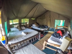 Our comfortable and spacious tent